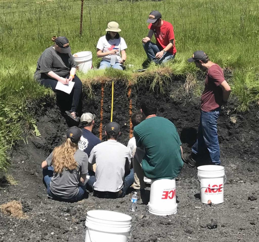 Students doing soil testing