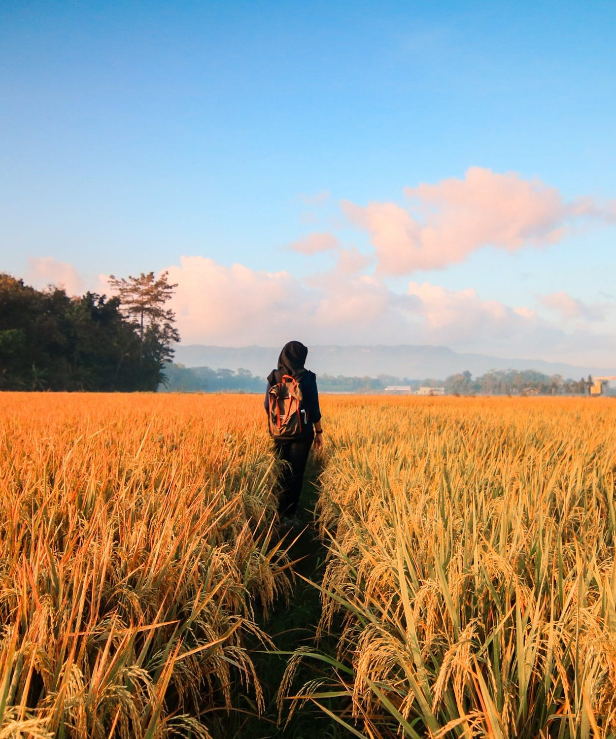 Person stands in field