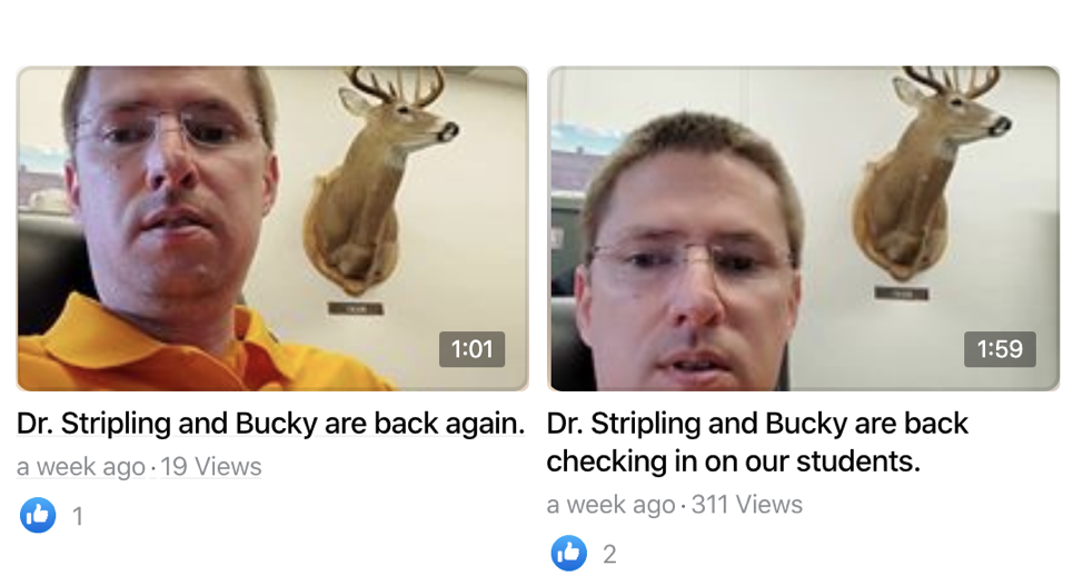 Dr. Striping and Bucky the Deer check in on student through video recordings on social media.